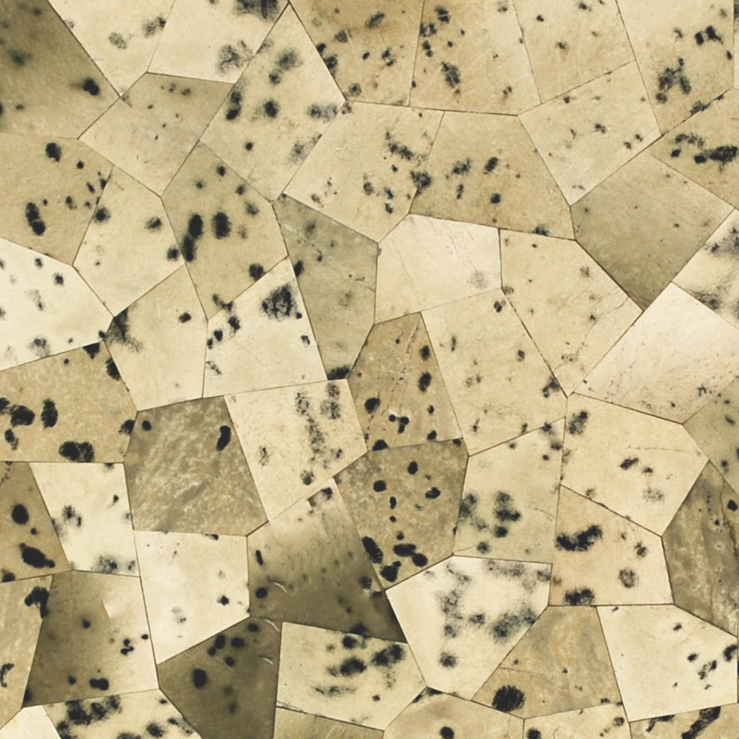 Dalmation Jasper Semi Precious Gemstone Overlay, per Sq. Ft.