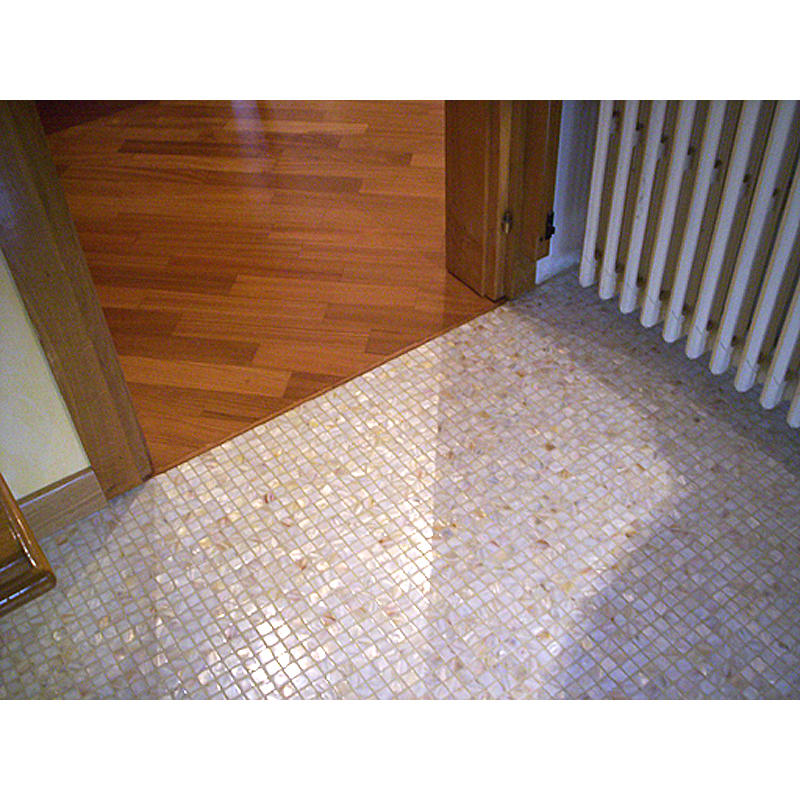 Natural River Shell Mosaic Floor
