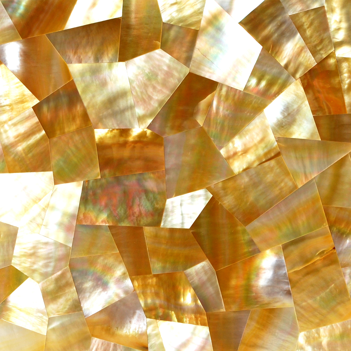 Gold Mother of Pearl Random Seashell, 1 square foot