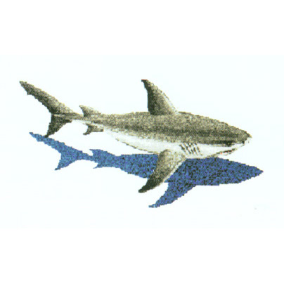 Shark Glass Swimming Pool Murals